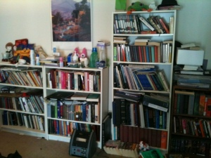 So many books! (and yet not enough)