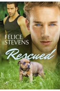 fs_rescued